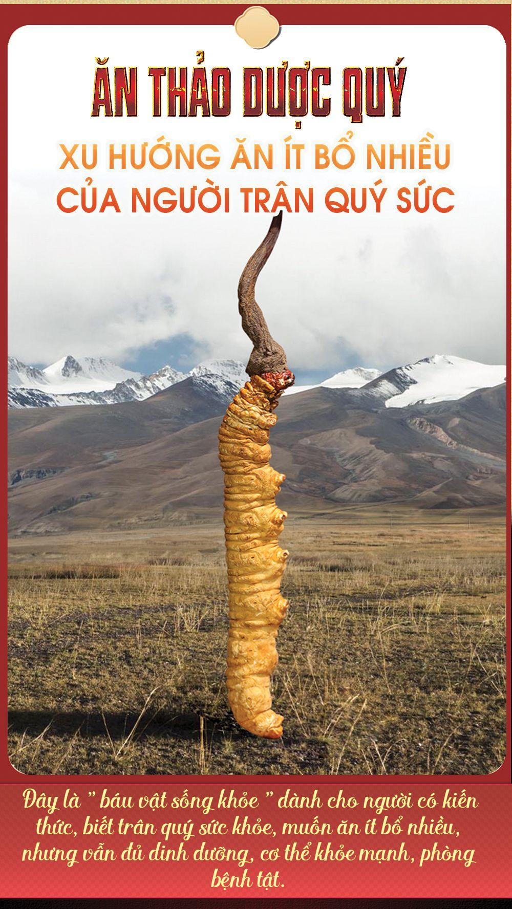 Đông trùng hạ thảo nguyên con đặc biệt
