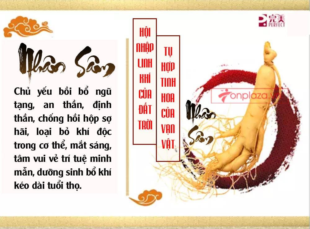 ad hong sam don 02 Hồng sâm đơn cát phúc Tiểu tiên đơn đại bổ sức khỏe NS446