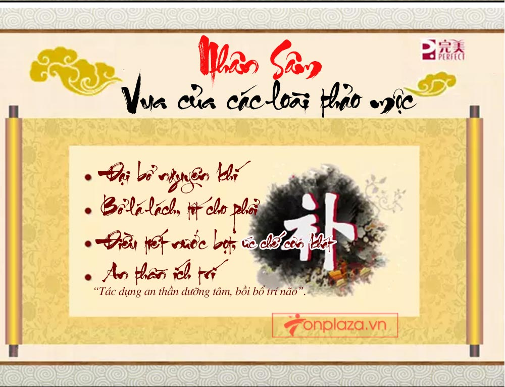ad hong sam don 03 Hồng sâm đơn cát phúc Tiểu tiên đơn đại bổ sức khỏe NS446