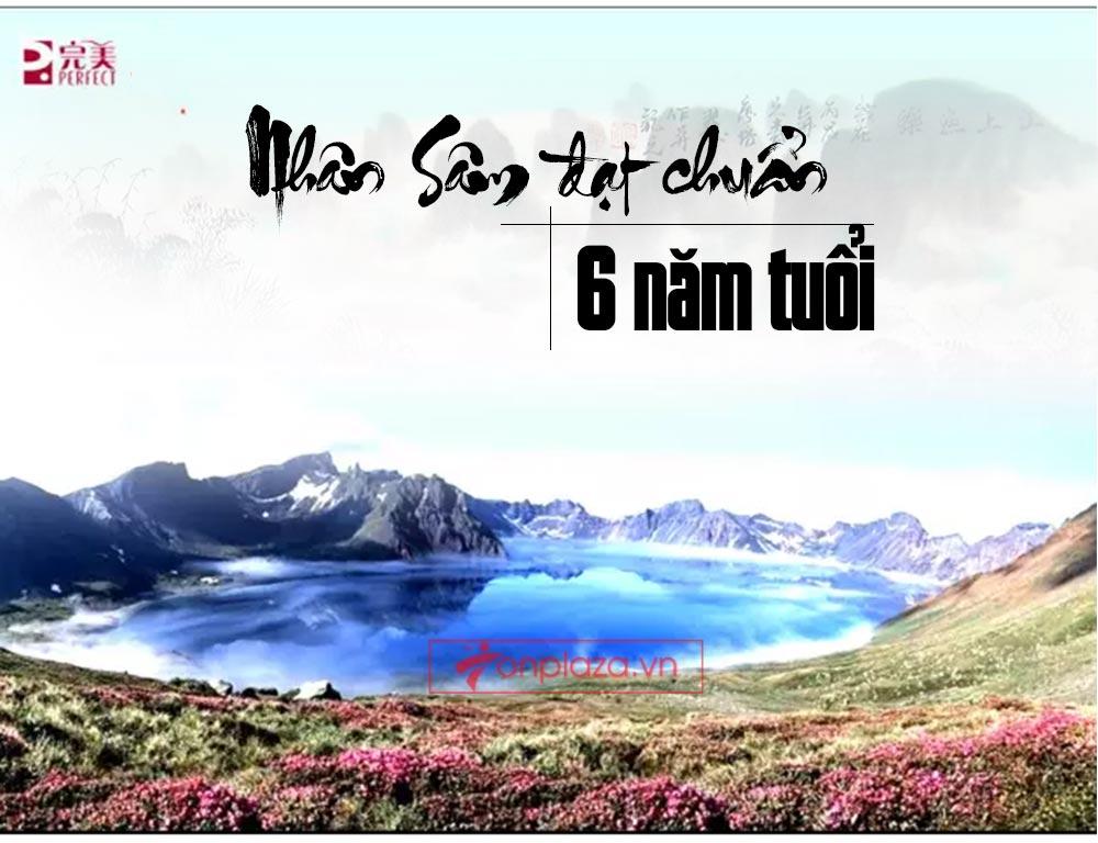 ad hong sam don 07 Hồng sâm đơn cát phúc Tiểu tiên đơn đại bổ sức khỏe NS446