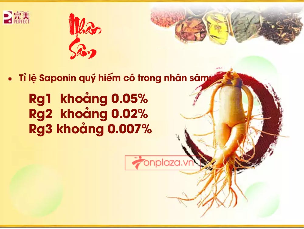 ad hong sam don 12 Hồng sâm đơn cát phúc Tiểu tiên đơn đại bổ sức khỏe NS446
