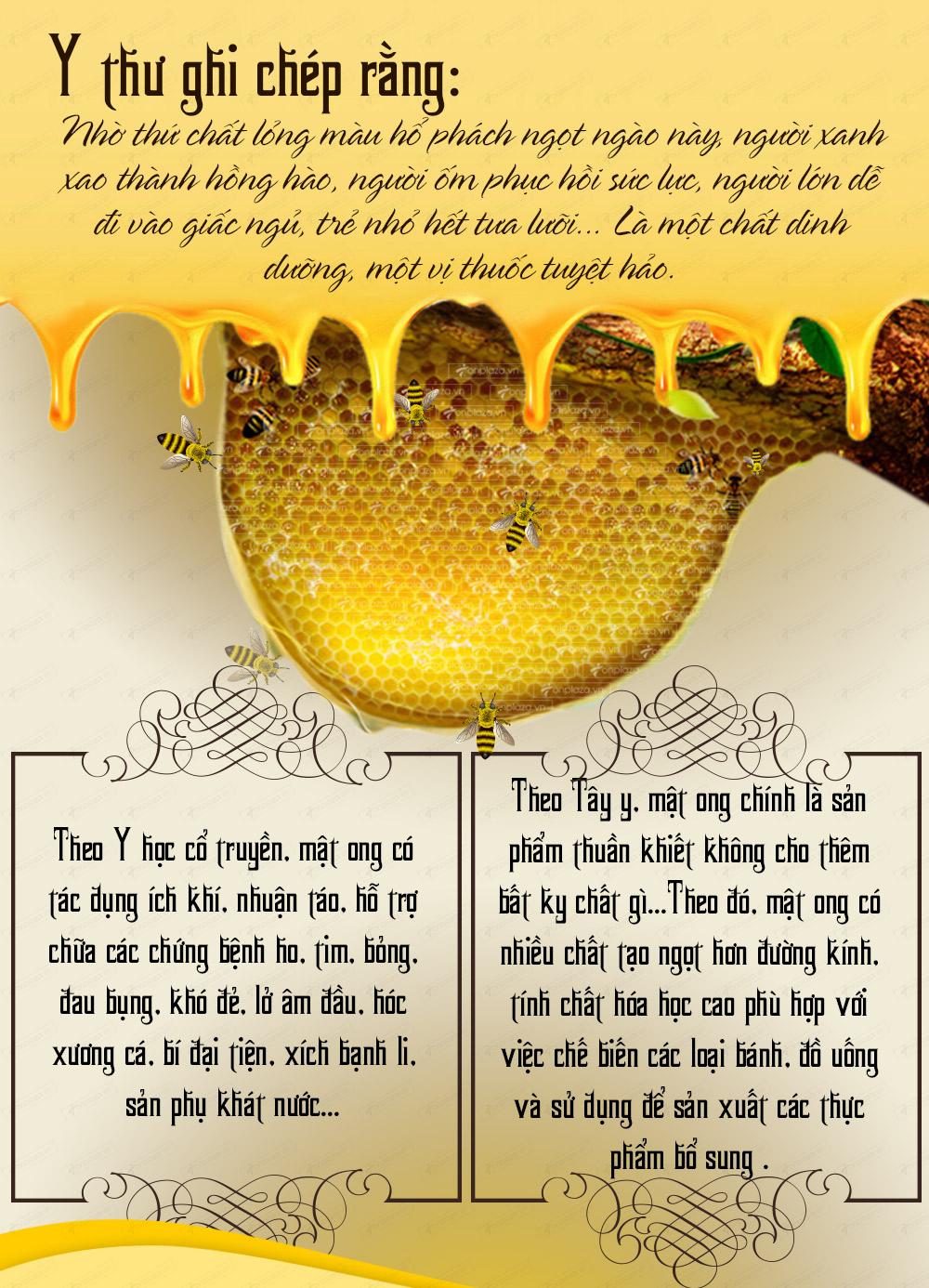 Mật ong rừng tự nhiên