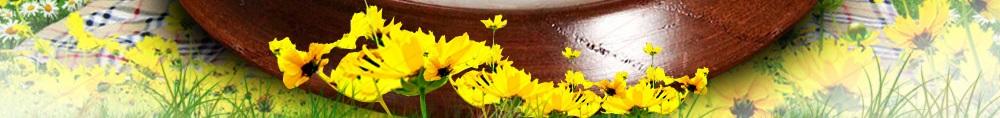 Địa chỉ bán mật ong trắng thiên nhiên rừng núi tại hà nội, tp hcm