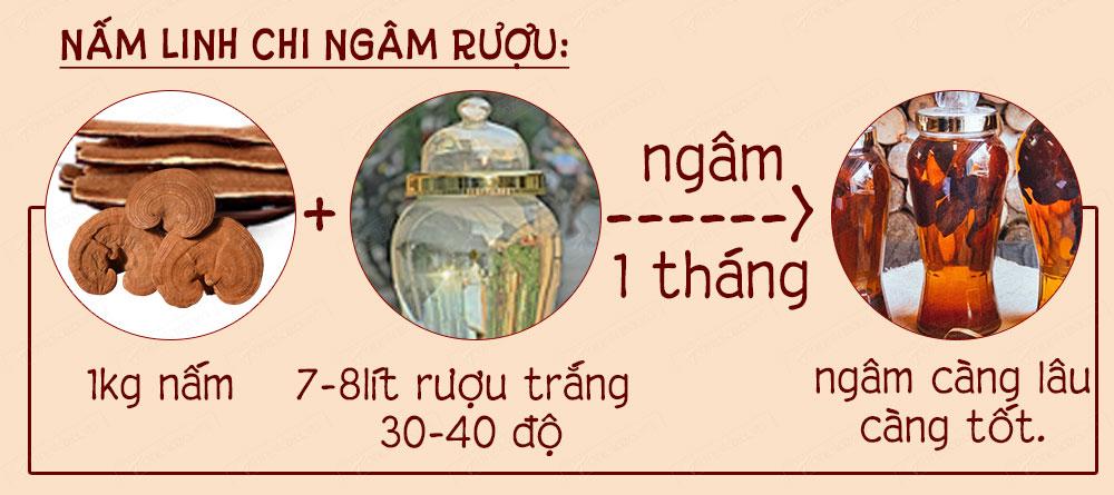 Nấm linh chi vàng Hàn Quốc thượng hạng L038