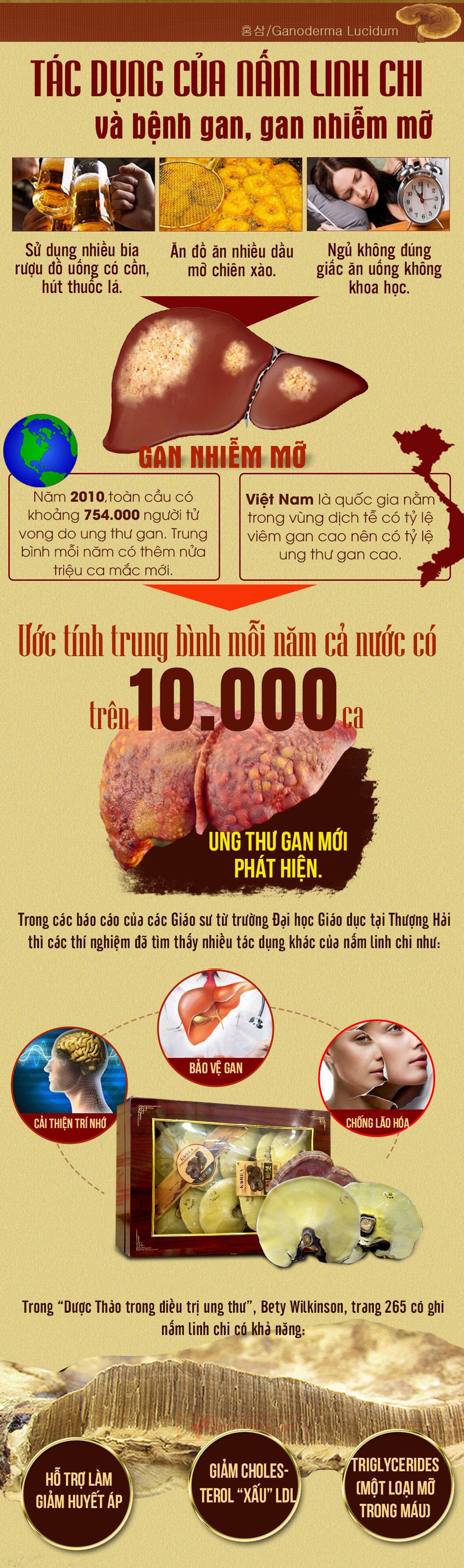 Nấm linh chi đỏ thượng hạng hộp quà biếu (1kg/ hộp) L047