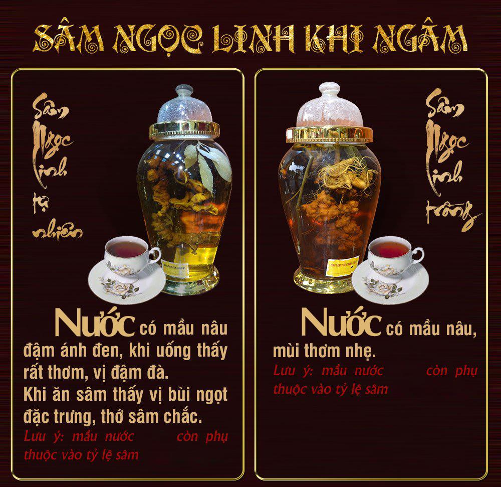 Binh rượu sâm ngọc linh