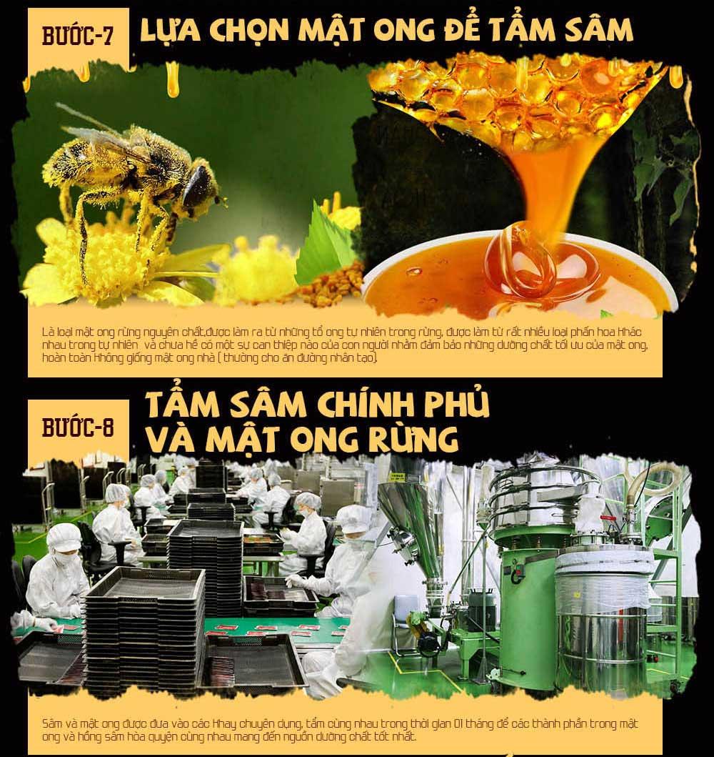 Hồng sâm chính phủ hàn quốc tẩm mật ong