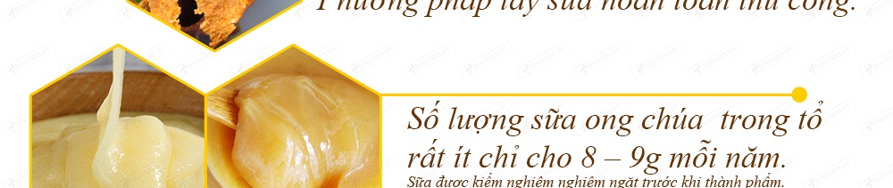 Địa chỉ bán sữa ong chúa chính hãng của úc tại hà nội, tp hcm
