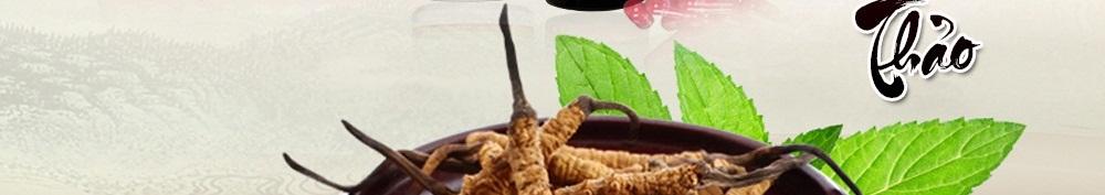 Viên uống đông trùng hạ thảo
