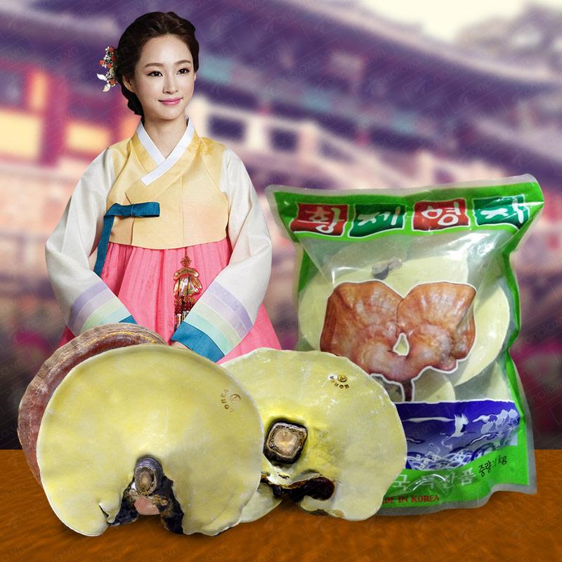 Giá nấm linh chi vàng thượng hạng loại túi xanh đặc biệt