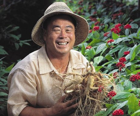 Công dụng thần kỳ ai cũng nên biết của sâm Hàn Quốc 6 năm tuổi đối với sức khỏe con người - 213439