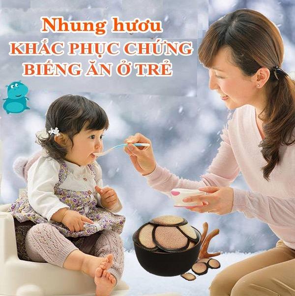 Nhung hươu cho trẻ biếng ăn bổ sung dinh dưỡng thiết yếu