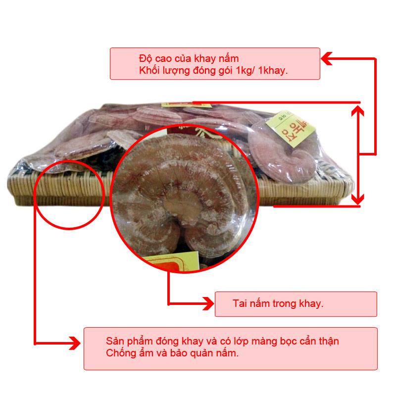 Nấm linh đỏ dạng khay Hàn Quốc