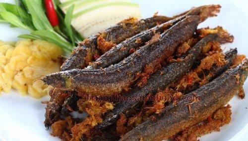 Thịt cá trạch chữa liệt dương hiệu quả