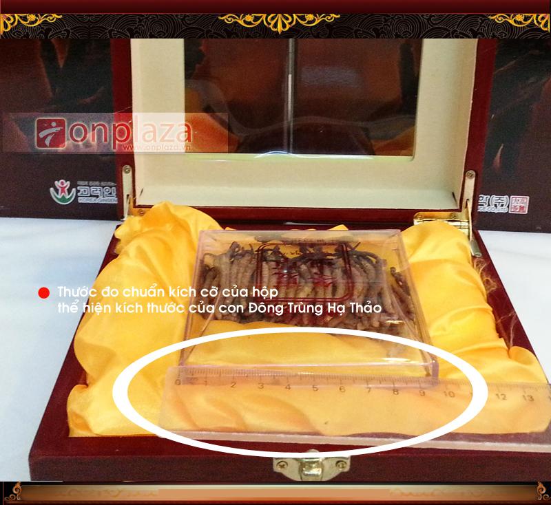 Thước đo thể hiện bề dày của bao bì, và chiều dài của đông trùng hạ thảo để quý khách hàng dễ hình dung.