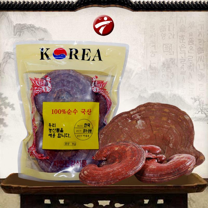 Nấm linh chi tai đỏ 6 năm tuổi ( Hàn Quốc )