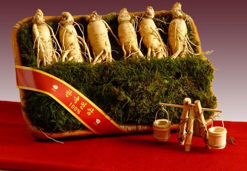 Nhân sâm Hàn Quốc món quà tặng sang trọng